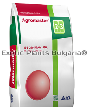 Agromaster 19-5-20+4MgO+19.5SO3 - 3 months - 25 kg