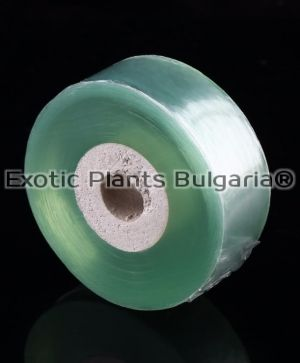Grafting Tape Tools -  PVC tie Tape 3CM x 80M / 1 Roll