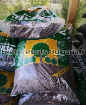 Blueberrymulch -  large fraction  L -50 ltr
